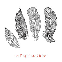 Vector Ornate Set of Stylized and Abstract Zentangle Feathers.