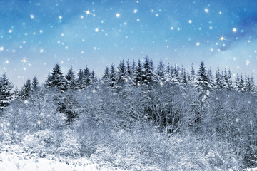 Christmas background with snow and trees.