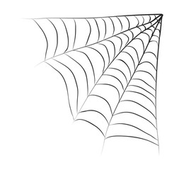 halloween spiderweb vector symbol icon design.