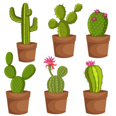 Green desert plant nature cartoon cactus