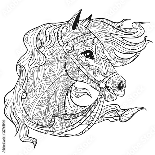 Hand Drawn Doodle Horse Face Page Animal Head Illustration For Adult Coloring Book