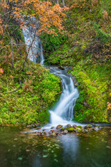 Wild waterfall in autumnal forest