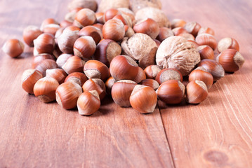 Hazelnuts and walnuts on wooden background. Focus on the foreground