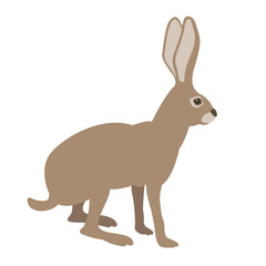 hare vector illustration style Flat