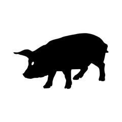 Pig silhouette. Vector illustration