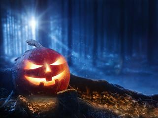 Halloween - Kürbis im Wald