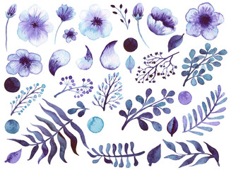 Set Of Watercolor Violet Flowers, Leaves And Elements