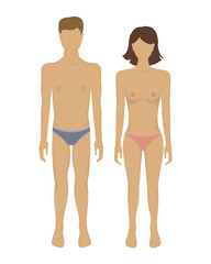Vector female and male body.