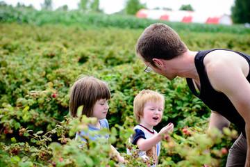 Man picking berries with children