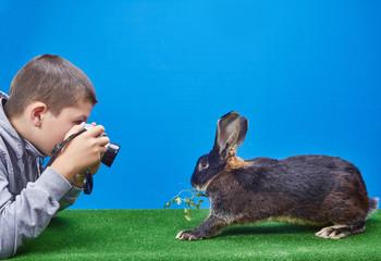 The boy photographs the rabbit