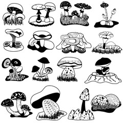 Black vector collection of different mushrooms