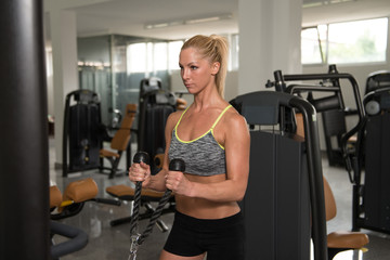 Fitness Woman Exercising Biceps On Machine