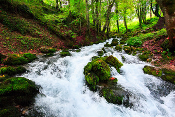 Autumn landscape with mountain river flowing among mossy stones through the colorful forest. Silky smooth stream of clear water. Red leaves frame this beautiful cascade small waterfalls in the wood.