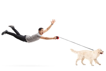 Guy being pulled by his dog Wall mural