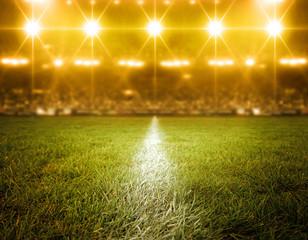 stadium, imaginary