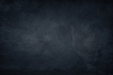 Poster Cat Dark Blue Concrete Background