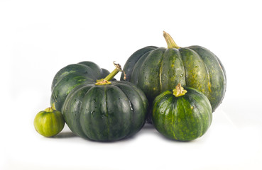 Green pumpkin on white background for isolation