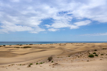 Sand dunes of the Canary Islands. Spain