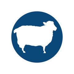 sheep animal silhouette over blue circle shape. vector illustration