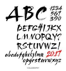 Vector Acrylic Brush Style Hand Drawn Alphabet Font