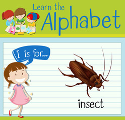 Flashcard letter I is for insect