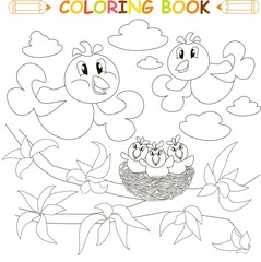 Coloring book bird family, chicks on nest, vector illustration