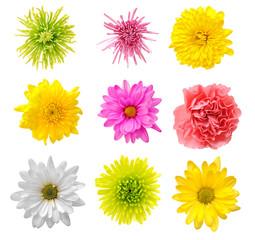 mix flower
