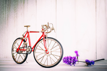 Model bike and dried flowers Placed on the old wooden floor.