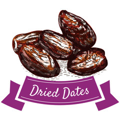 Dried dates colorful illustration.