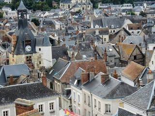 Roofs of Amboise, France