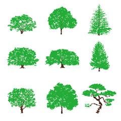 樹木のイラスト