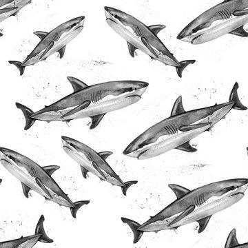 Watercolor great white shark pattern.