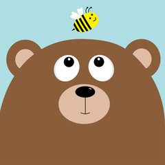 Bear grizzly big head looking at honey bee insect. Cute cartoon character. Forest baby animal collection. Blue sky background. Isolated. Flat