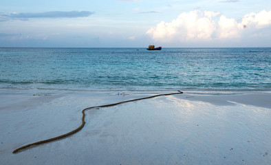 beach  nature  white sand, seawater Sai Beach Koh LIPE in Thaila
