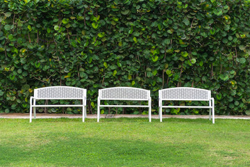 outdoor white benches in the beautiful garden