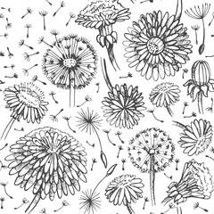 Floral pattern with doodle dandelions. EPS10 Vector illustration