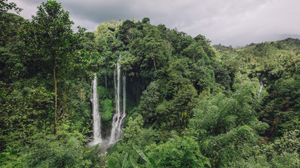 Waterfall in a tropical rain forest