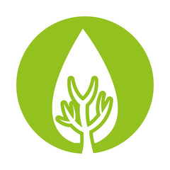 tree plant forest isolated icon vector illustration design