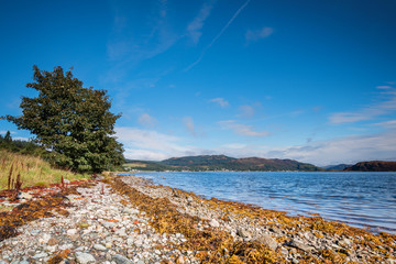 Shoreline on the Kyles of Bute, also known as Argyll's Secret Coast, in the Firth of Clyde seen here just south of villages Kames and Tighnabruaich