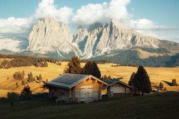 Alpe di Siusi, Dolomites, Italie