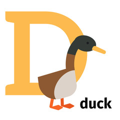 English animals zoo alphabet with letter D. Duck vector illustration