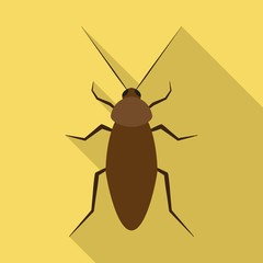 cockroach flat icon