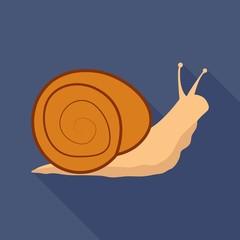 snail flat icon