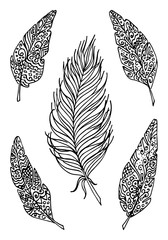 Monochrome bird feather boho vintage sketched art vector set