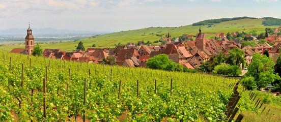 Le village alsacien de Riquewihr au milieu des vignes