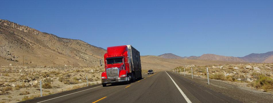 Distant truck on desert highway