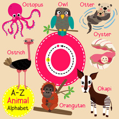 O letter tracing. Octopus. Orangutan. Otter. Owl. Oyster. Ostrich. Cute children zoo alphabet flash card. Funny cartoon animal. Kids abc education. Learning English vocabulary. Vector illustration.