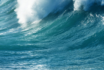Large Powerful Ocean Wave