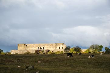 Castle ruin in spotlight