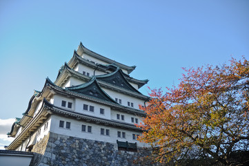 Foto auf Acrylglas Schloss Ancient Osaka castle and maple trees in Autumn Kansai Japan